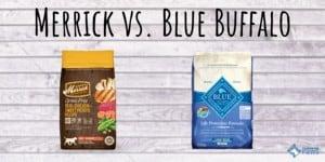 Merrick vs Blue Buffalo Dog Food Review