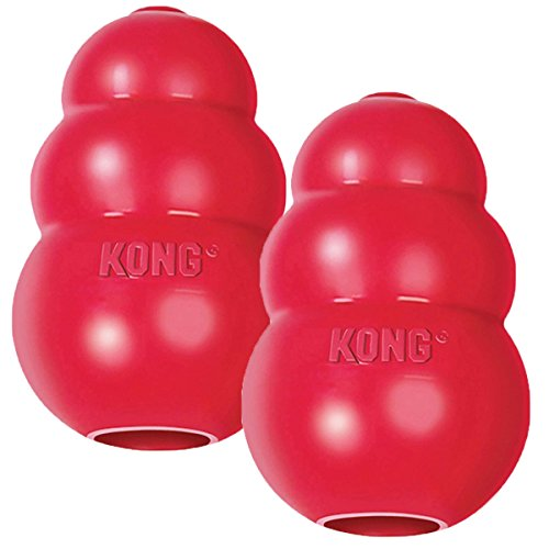 Kong dog chew toy mental stimulation long crate time boredome