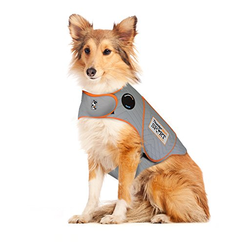 Thundershirt relieve anxiety help keep dog from pooping inside house