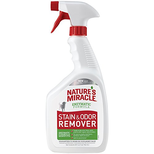 Nature's Miracle enzymatic stain odor remover help house train dog to poop outside
