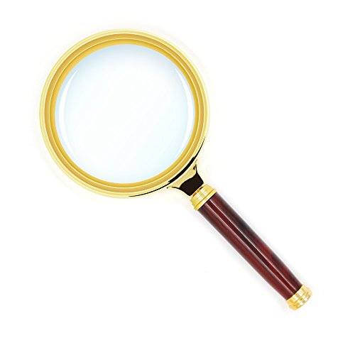 How to identify flea infestation magnifying glass to see eggs and larva