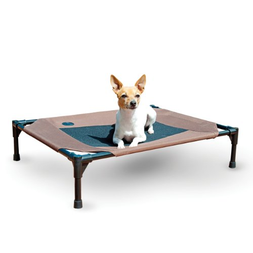 elevated dog bed keep pet away from dirt bugs cold ground
