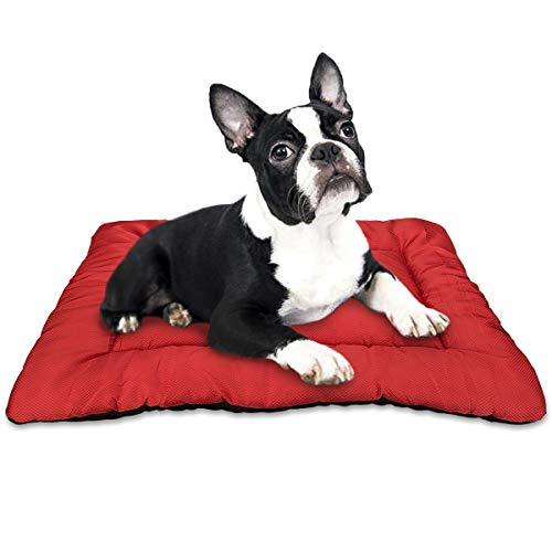 indestructible dog bed chew resistant bite proof good bedding for bad dogs