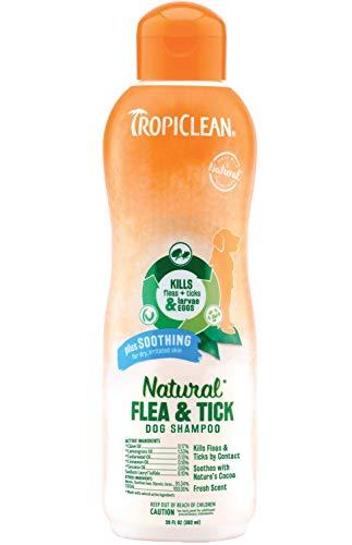 Natural flea tick dog shampoo prevent flea bites treatment
