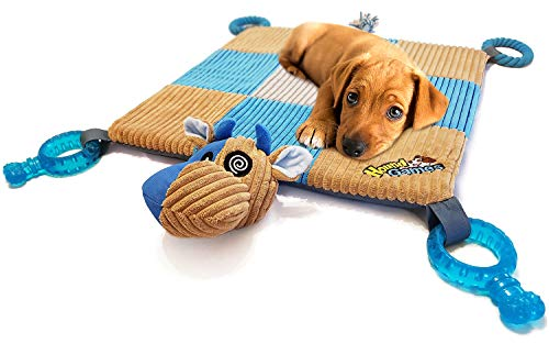 Dog play mat settle down training exercise to calm excited puppy