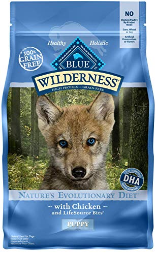 Blue Buffalo Wilderness puppy food more protein fat better nutrition