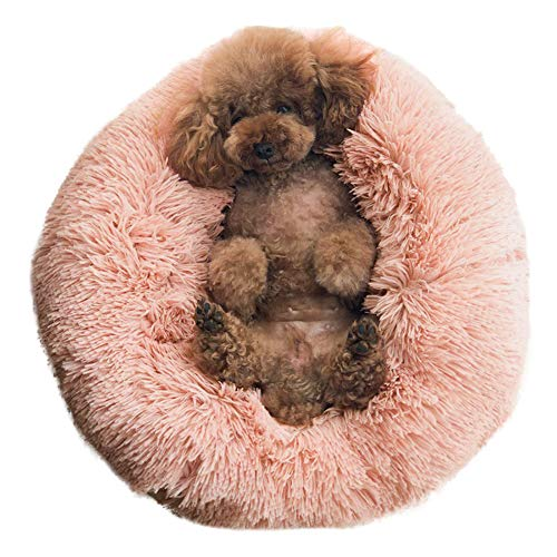 nest dog bed for small dogs which like to burrow