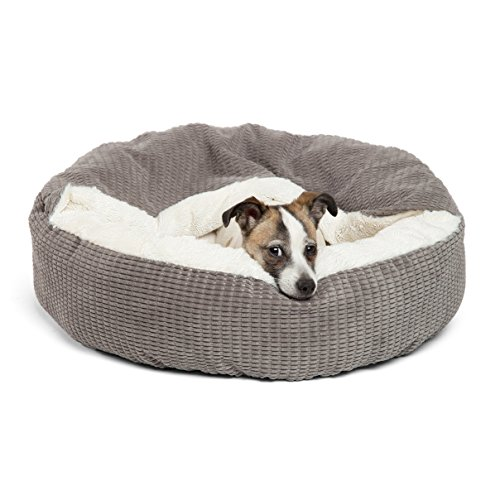 different breeds bed styles which dog bed best large small thick fur dogs