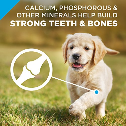 Purina Pro Plan Chicken Formula puppy food calcium phosphorous minerals teeth bones