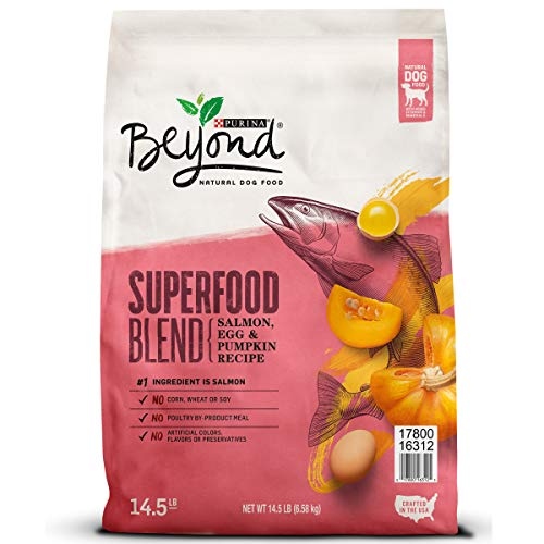 Purina Beyond x factor availability choices which dog food is better best