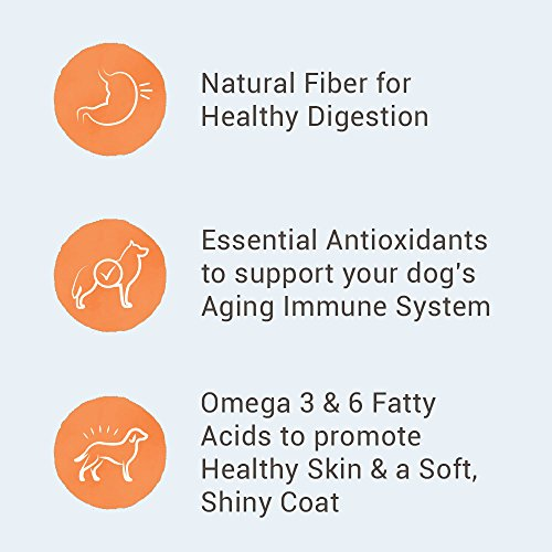 What to look for in a dog food nutro taste of the wild differences ingredients quality