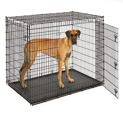 Does dog breed matter for crate length of time great dane low energy breed