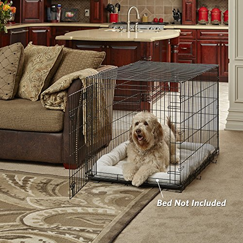 Where should you place dog crate for comfortable dog experience quiet calm