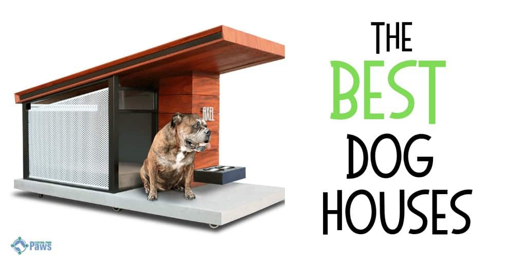 Best Outdoor Dog Houses for Large, Medium, and Small Dogs in Any Weather
