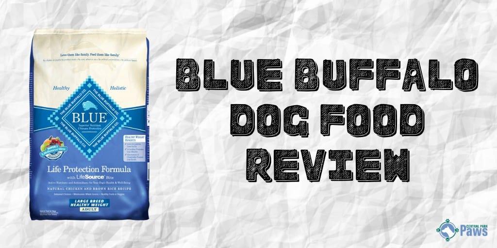 Blue Buffalo dry Dog Food Review
