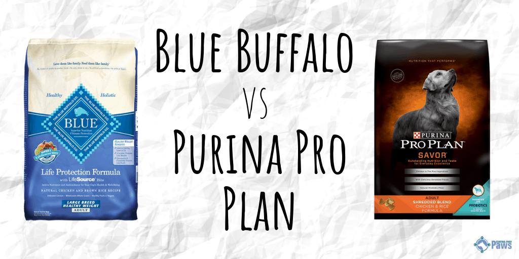 Blue Buffalo vs Purina Pro Plan Dry Dog Food Review