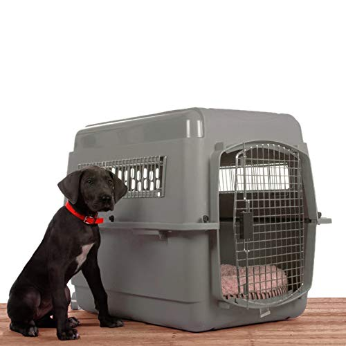Plastic dog kennel advantages disadvantages good for travel permanent use