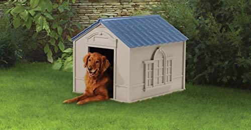 Large dog house easy to put together not expensive good value price