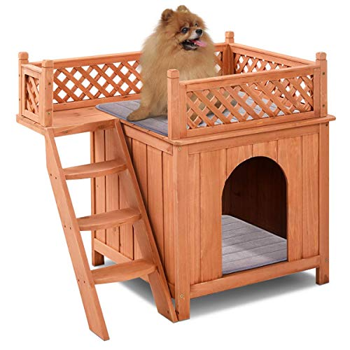 How to choose best dog house size for my small medium large pet puppy