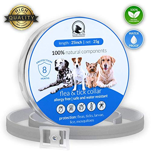 Lucky Pluto flea tick collar good for old dogs 8 months water resistant