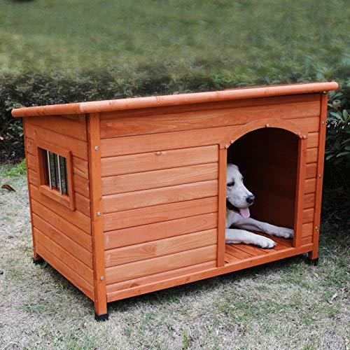 Which material dog house plastic wood metal resin cedar fir polymer best choice