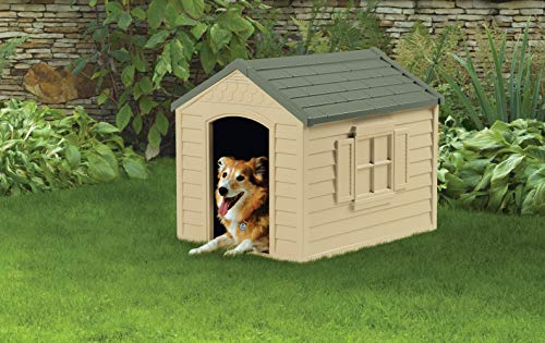 Cheap yet good dog house for budget minded pet owners inexpensive durable