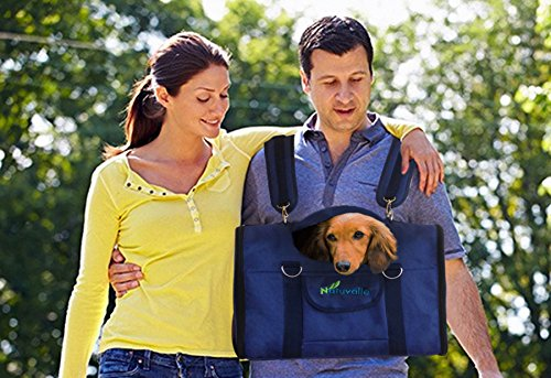 Carry dog on chest backpacking hiking camping outdoors bring pet outside