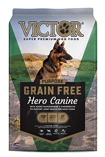 Best Dog Food for Younger Dogs with Joint Issues