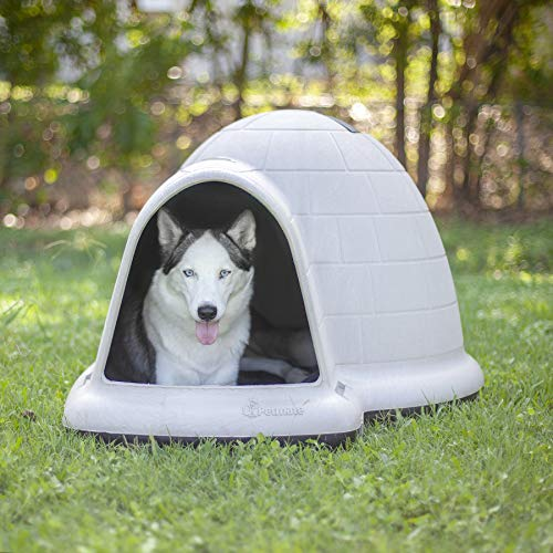 Dog igloo bacteria resistant easy to clean durable long lasting survive outdoor weather