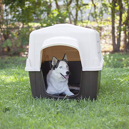 Why give my dog a dog house should pet canine have outdoor home protection