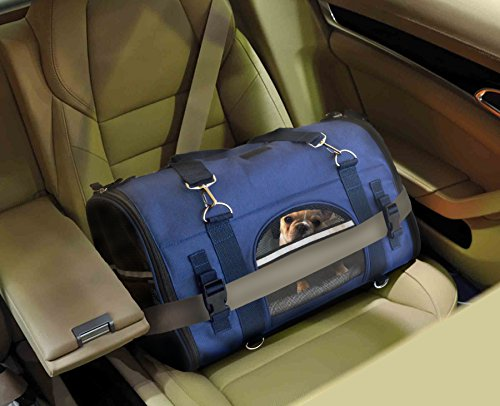 Good soft crate for travelling with dog in car safely seatbelt