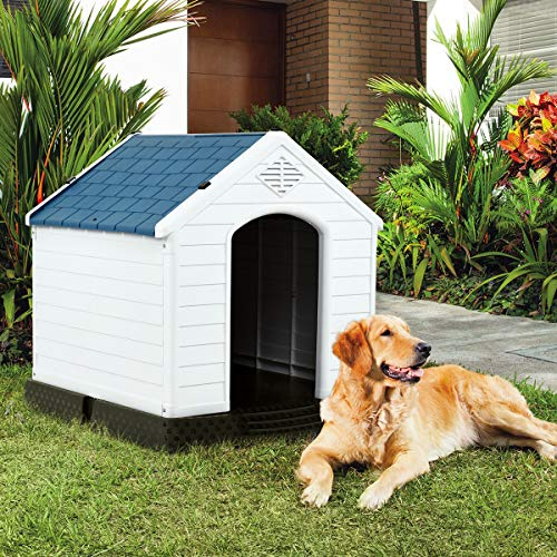 Shed dog house practical utilitarian effective design to keep dogs safe and dry