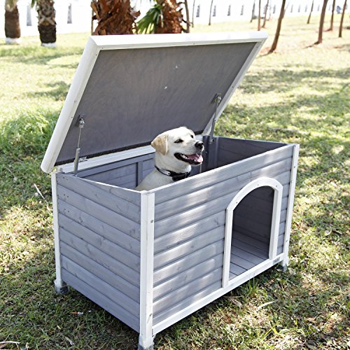 Where to put best place for dog house outdoors in shade where dog likes to lay down