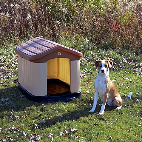 Best outdoor dog house top pick which to choose