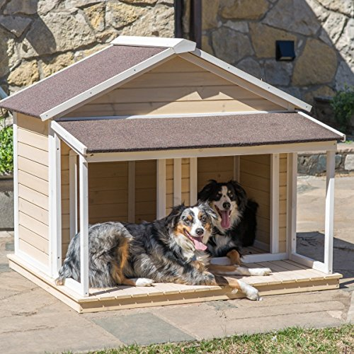 Patio dog house miniature human home lets dog hang out outside with roof deck