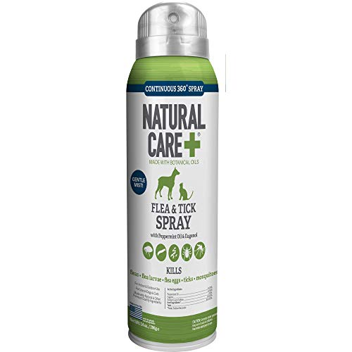 Best natural flea control spray tick safe for dogs cats peppermint essential oils