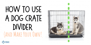 How to Use a Dog Crate Divider and Make Your Own