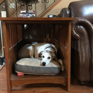Why choose end table style dog crate furniture for indoor dog beds