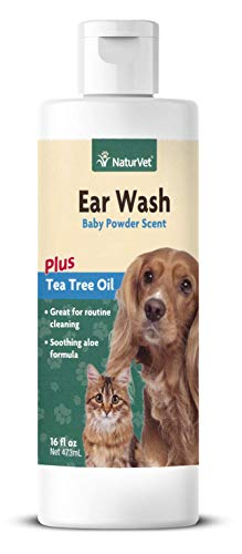 How to use essential oils to clean dog ears fight infection ear mites