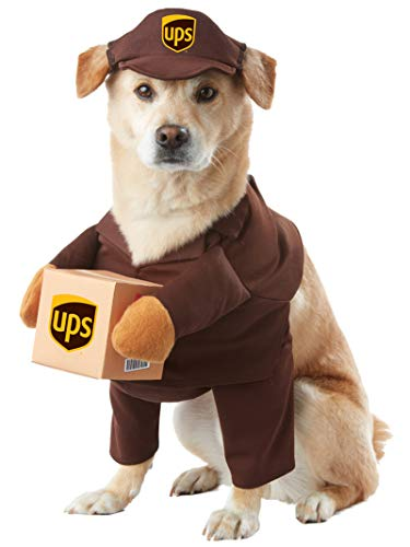 Online shipping best rates fastest choices UPS dog costume