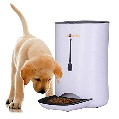 Why use automatic feeder for senior dog diets