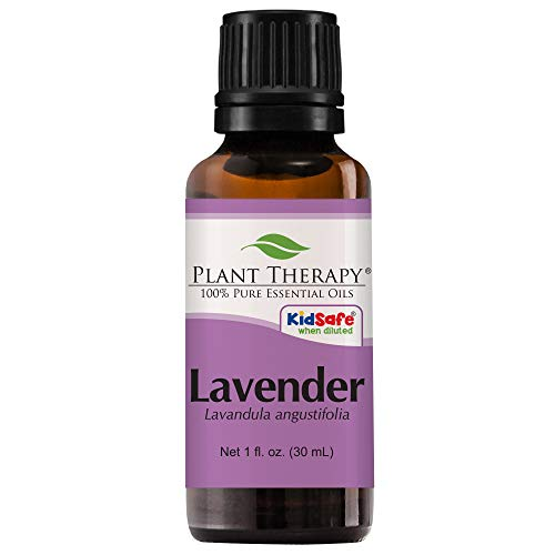 Plant therapy lavender essential oil uses canine dog pet health