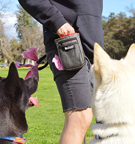 Leash Boss training treat pouch recall dogs off lead walking