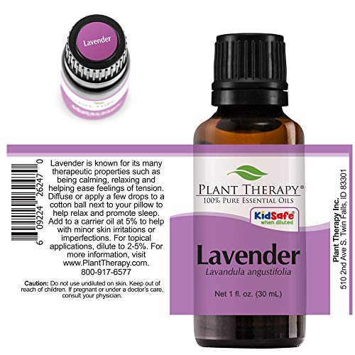 How to use lavender essential oil to soothe dog painful skin ailments