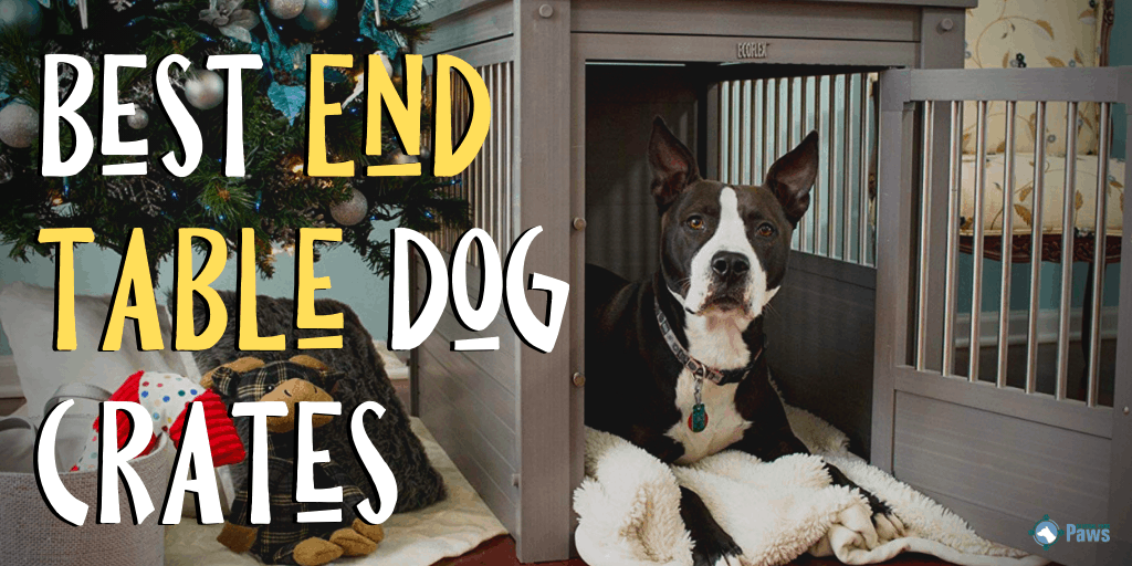 Best End Table Dog Crates - Furniture-Style Kennels That Look Good in Your House