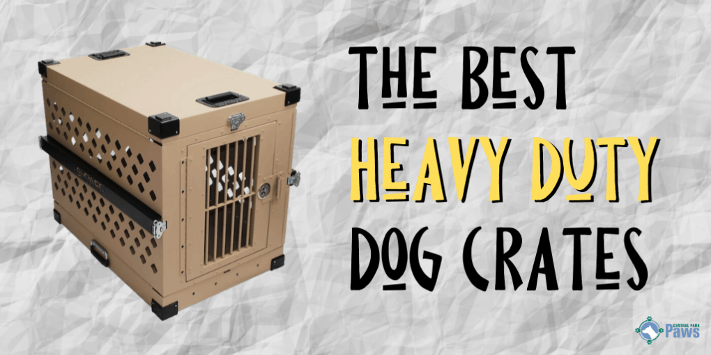 Best Heavy Duty Dog Crates