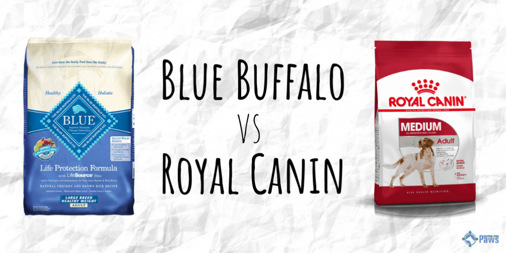 Royal Canin vs Blue Buffalo Dry Dog Food Review