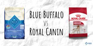 Royal Canin vs Blue Buffalo Dry Dog Food Review