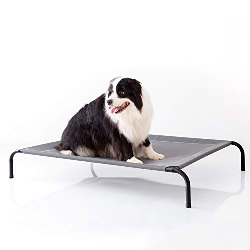 Raised dog bed cot helps keep long haired dogs cool circulates air