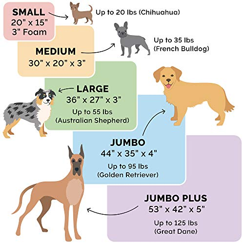 Dog breed bed size suggestions for proper sizing
